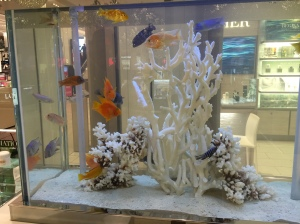 Aquarium at Macys http://runwright.net