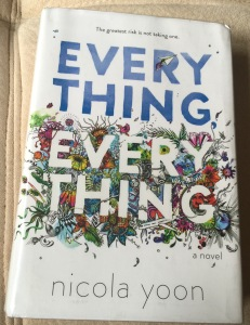Everything I loved and everything I didn't. A review of the YA novel, Everything by Nicola Yoon