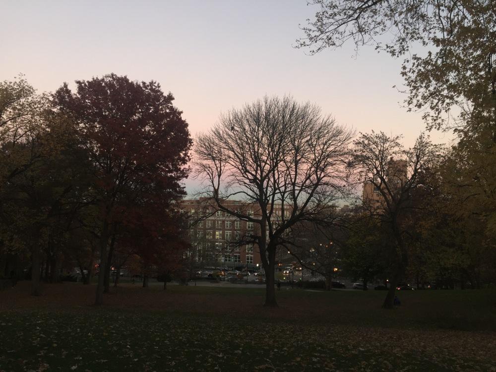 St Nicholas Park, NYC